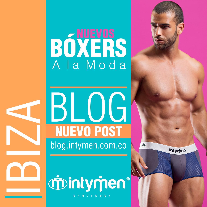 Ibiza Brief-Boxer Brief, ropa interior masculina medellin